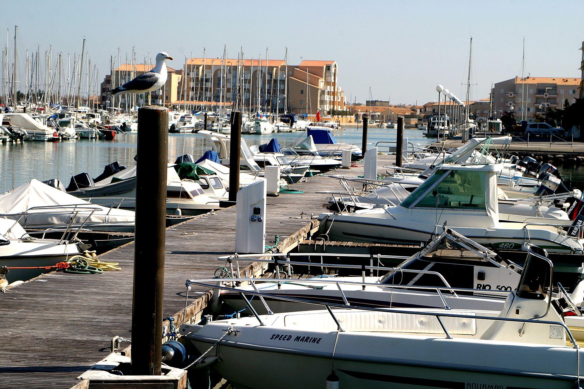 Port de plaisance frontignan la peyrade - Port de plaisance le crouesty ...