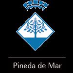 BLASON_PINEDA