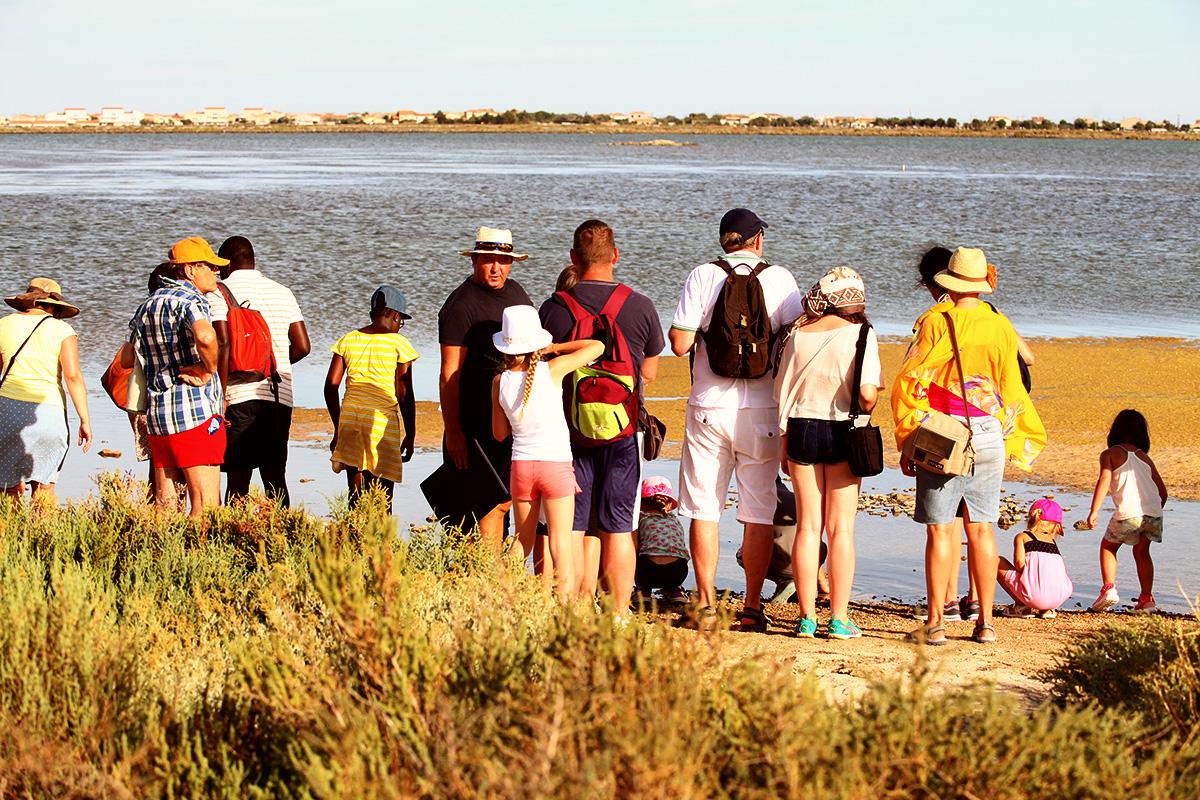 Balades de l office de tourisme r servez vos billets en ligne frontignan la peyrade - Frontignan office du tourisme ...
