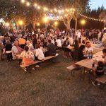 UN ETE EN PHOTOS_25 juillet 2017 - Festival de Thau_2