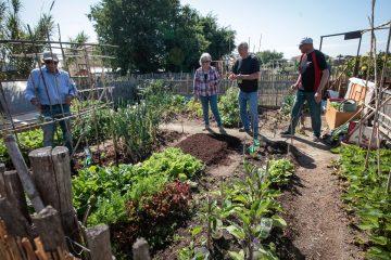 seniors - semaine bleue 2019 - jardins partagés