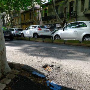 boulevard gambetta arbre voiture