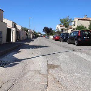 rue cinsault